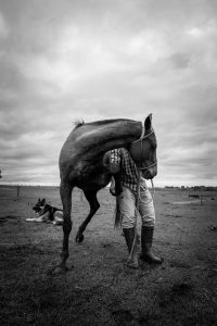 Man With Horse - Masculine Energy
